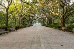 Benches in Forsyth Park royalty free stock photography