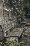 Benches. In front of a city wall royalty free stock images