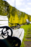 Benches in garden Royalty Free Stock Photography