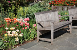 Benches in the garden. On day royalty free stock photo