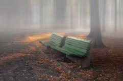 benches gatan för edinburgh trädgårdprinces Royaltyfri Fotografi