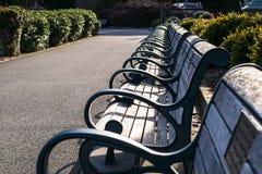 Benches in the Golden Gate Park of San Francisco stock photos