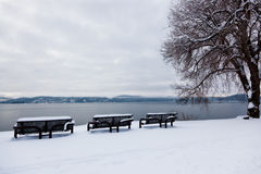 Benches by the Lake in Winter Stock Photo