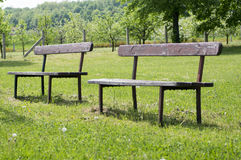 Benches on the lawn Royalty Free Stock Photos