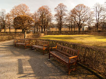 Benches. Located in Munich's Hofgarten, 2008 stock image