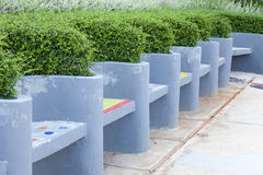 Benches made of concrete. A dwarf shrubs in the garden decorations stock photo