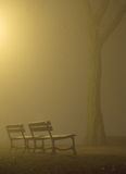 Benches in the mist Royalty Free Stock Photos