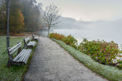 Benches Near Walkway On Lake Royalty Free Stock Image