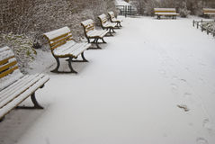 benches neigeux Images stock