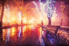 Benches at night alley Royalty Free Stock Photography