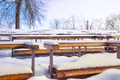 The benches in snow. The benches in the open air theater in the snow Stock Image