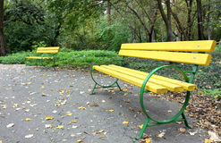Benches in the park. Yellow benches in a park in the autumn Stock Image