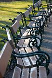 Benches in a park. A row of benches in a park in Wien Royalty Free Stock Photography