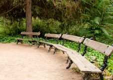 Benches in the park Stock Photography