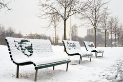 Benches in the park. A row of benches in the park on a snowy day Royalty Free Stock Photos