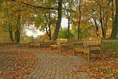 Benches in the park. In autumn Royalty Free Stock Images