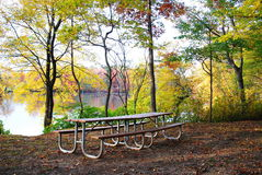 Benches  in the park Stock Photo