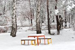 Benches in the Park. Covered With Snow Royalty Free Stock Image