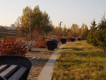 Benches in the park. Astana, some benches in the park near the red bushes and trees; President park Stock Image