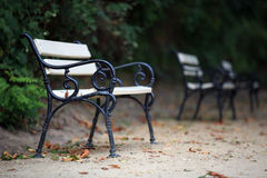 Benches in the park. In autumn Stock Photo