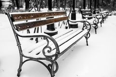 Benches in the park with snow 2. Benches in the park covered with snow 2 Royalty Free Stock Image