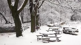 Benches in the park covered in snow. Calm winter day with snow falling down stock footage