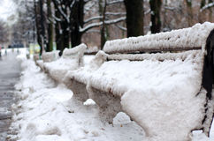 Benches in the park, covered with snow. Horizontal view Royalty Free Stock Image
