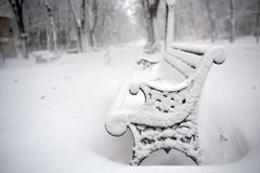 Benches in the park covered with snow Stock Image