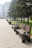 Benches in park Royalty Free Stock Image