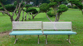 Benches in the park. Benches in the green park Royalty Free Stock Photo