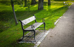 Benches in a park. Benches in a green park with trees royalty free stock image