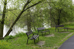 Benches in the park near the Warta river. Benches near the Warta river in the Szelagowski Park in Poznan, Poland stock images