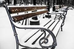 Benches in the park with snow 1. Benches in the park covered with snow 1 Stock Photo