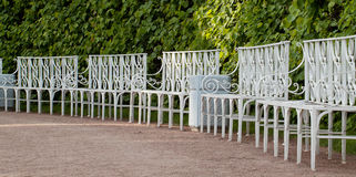 The benches in the park. The benches in the summer park Stock Images