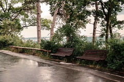 Benches in the park. Two benches in the park Royalty Free Stock Photos