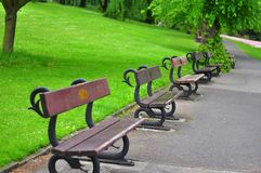 Benches in a park in the UK during Winter. In a green park Royalty Free Stock Images