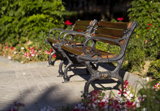 Benches in a Park Stock Image