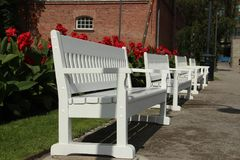 Benches in the park. White benches in the park Stock Image