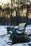 Benches in park at winter Stock Images