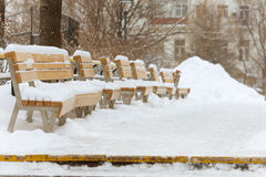 Benches in the park in winter Royalty Free Stock Photography