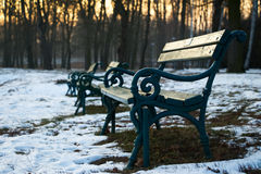 Benches in park at winter season Royalty Free Stock Photography