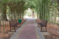 Benches for relaxing in the shade Stock Photo