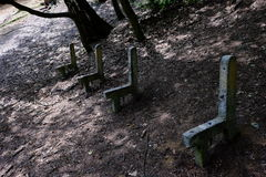 Benches. The rest of the benches in the grove Royalty Free Stock Photo