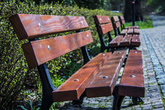 Benches in a row. Stock Image