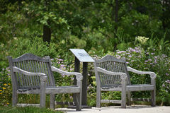 benches skogen Royaltyfri Foto