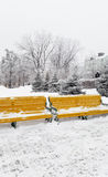 Benches with snow on the Kharkiv street -  winter Stock Photography