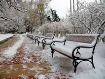 Benches with snow in Sofia Stock Photography