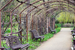 Benches in spring park Royalty Free Stock Images