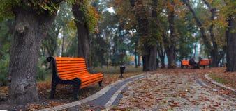 benches stadsparken Arkivfoton