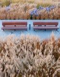 benches stadsparken Arkivfoto
